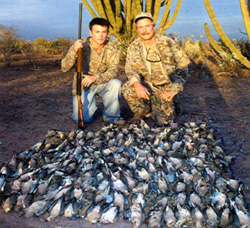 Mexico Dove Hunting